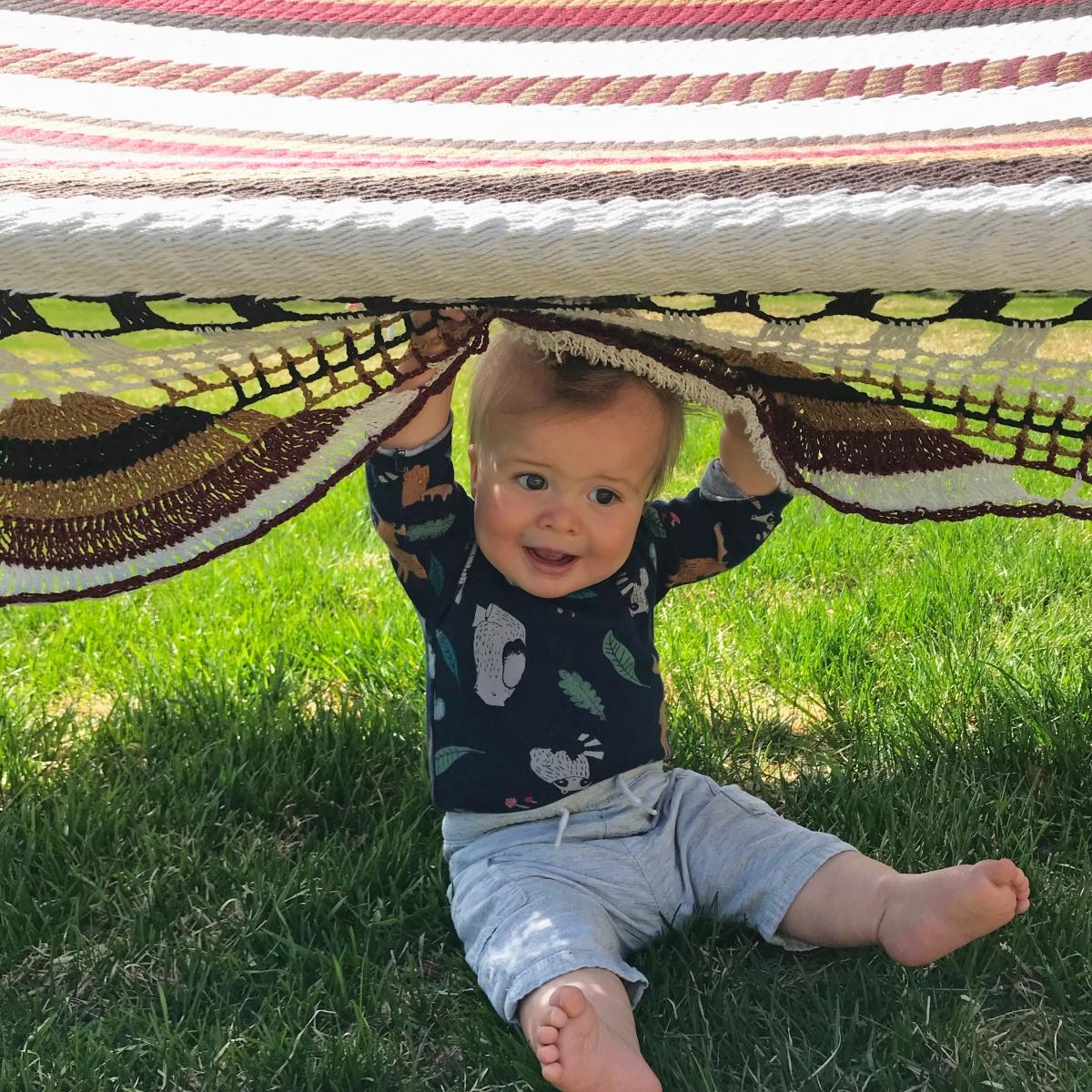 arlo hammock